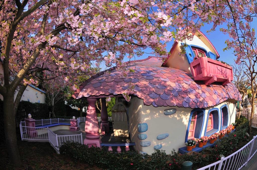 カワヅザクラ(3 月下旬~4 月上旬) (c)Disney