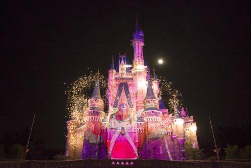 東京ディズニーリゾート~ある日の一枚~ (c)Disney