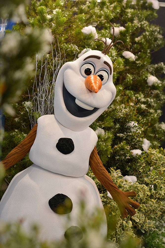New Meet & Greet with Olaf to Debut at Disney's Hollywood Studios This Spring (c)Disney