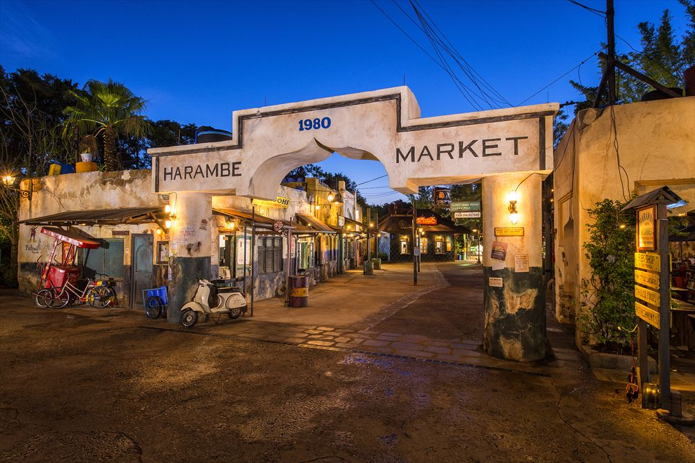 Harmabe Market at Disney's Animal Kingdom (c)Disney