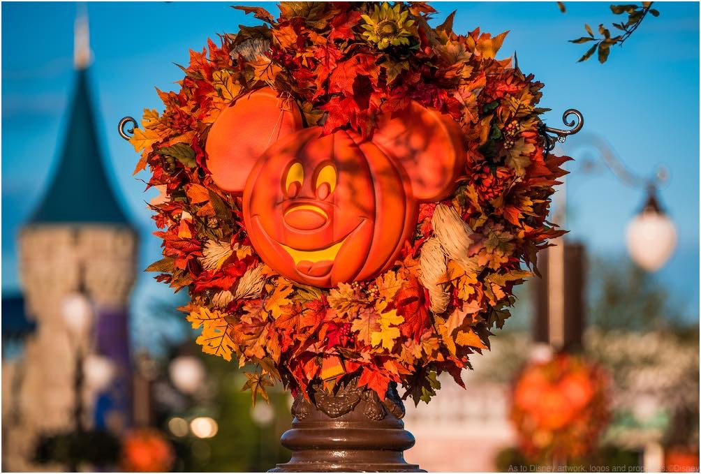 This Autumn, Walt Disney World Resort guests can enjoy many WonderFALL experiences at each of the four theme parks and at Disney Springs.  As to Disney artwork, logos and properties:©Disney