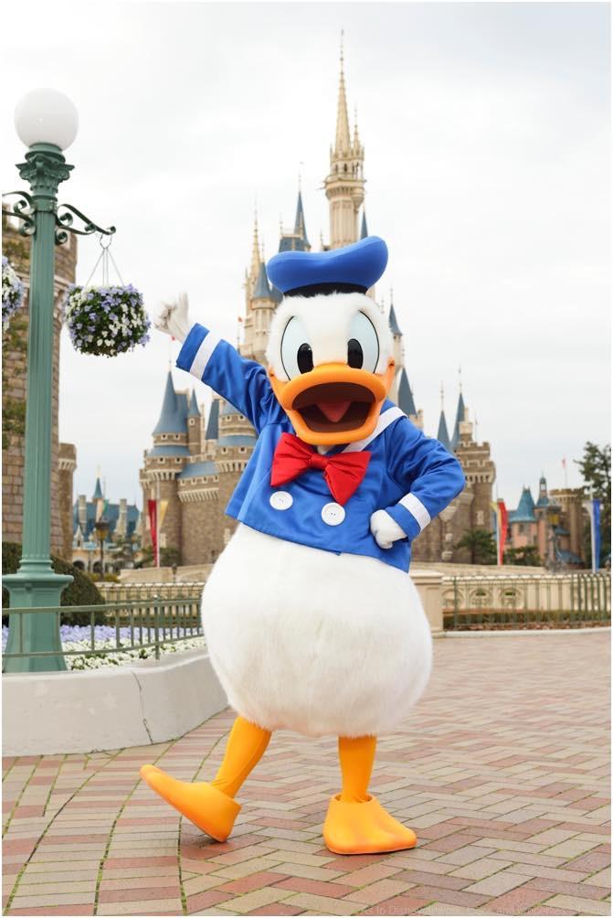 ドナルドダック (c)Disney